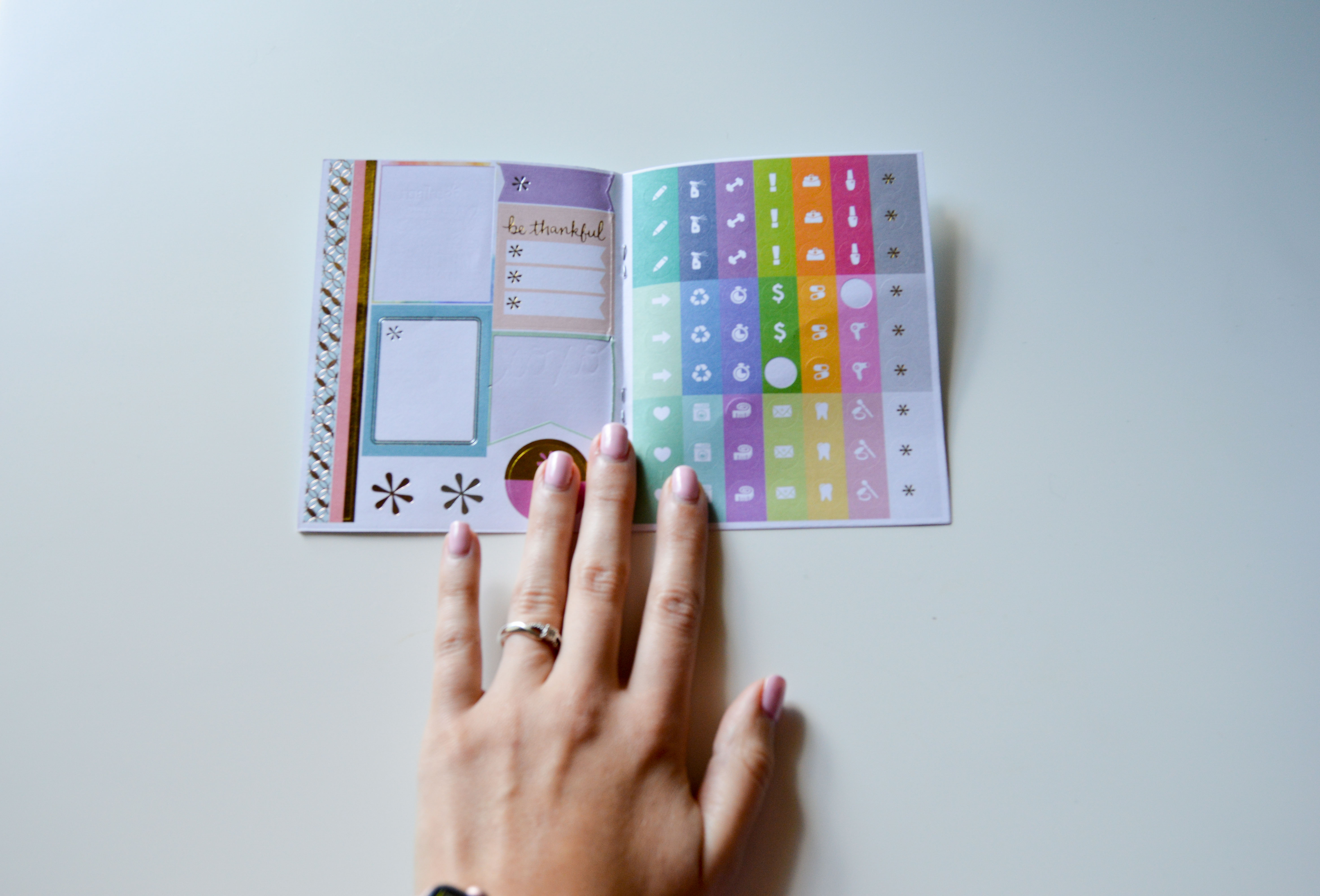 erin condren LifePlanner, best planners for college students